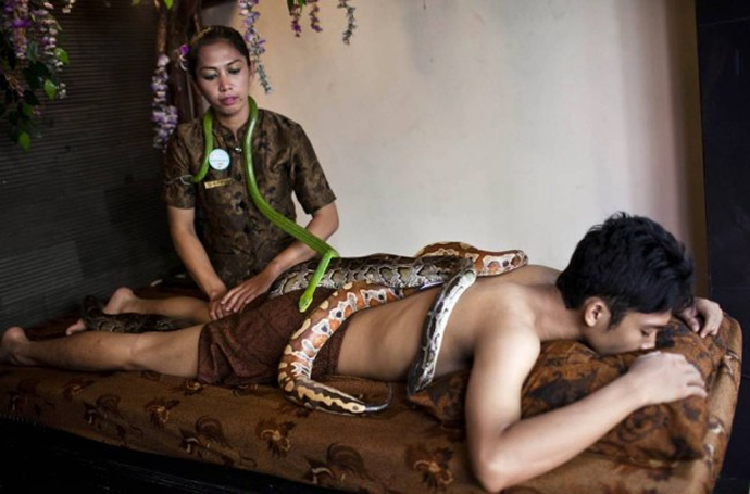 snake-spa-1